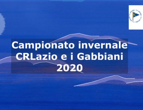 Gabbiani 1 Marzo 2020
